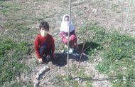 تأمین سیمان مورد نیاز ساخت خانه دو دانشآموز چهاردانگهای